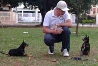 Treinador Roger - Cães: Tico e Teco